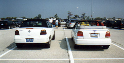 Two Cabrios - Rear View